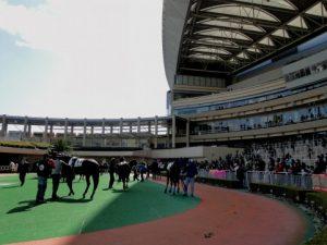 【社内恋愛のデート⑧】競馬